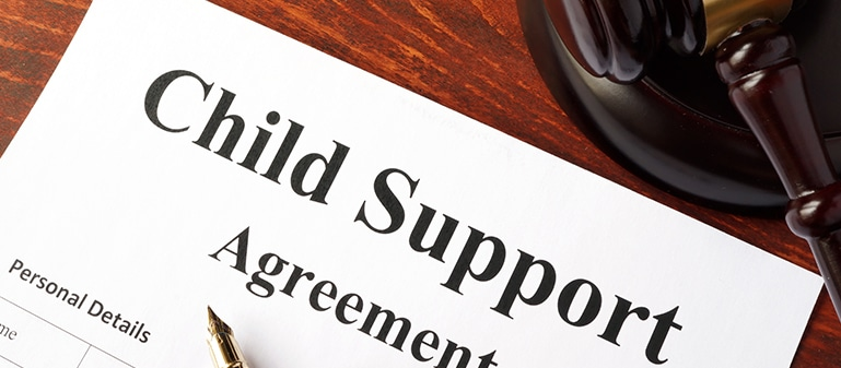Fort Mill and Rock Hill Child Support Attorney